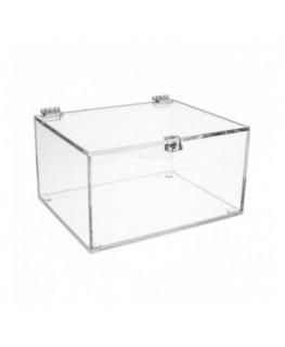 E-191 TEC - Teca in plexiglass trasparente - Misure interne: 20x15x H10