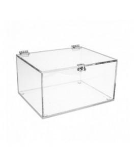 Teca in plexiglass trasparente - Misure interne: 20x15x H10